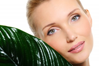 Beautiful face of young woman with clear fresh skin and green plant near her cheek